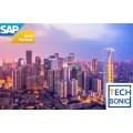 成都做SAP系统升级的公司