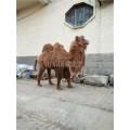 仿真骆驼动态叫声模型