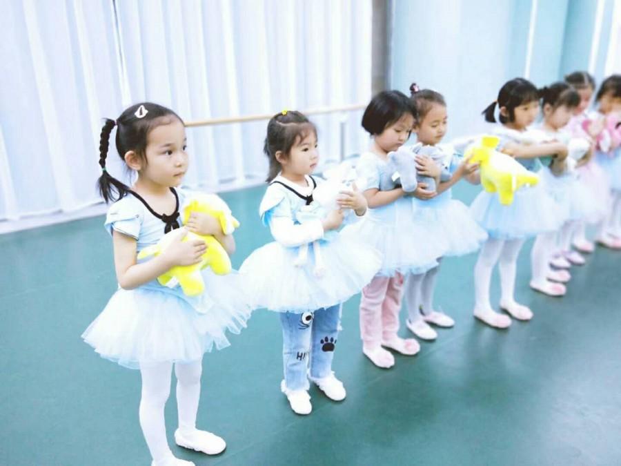 北京带舞蹈,美术,声乐,书法培训的文化教育公司转让