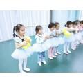 北京带舞蹈,美术,声乐,书法培训的文化教育公司转让0