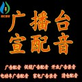 平顶山宣传片配音_品牌广告配音