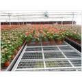 花卉活动育苗床-温室移动栽培床