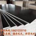 建筑模板无棣建筑覆膜板高强度耐磨损德州星冠木业0