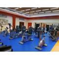 健身房运动器材配置 坐式踢腿训练器