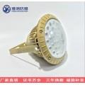 60W防爆LED节能灯 60WLED工矿灯