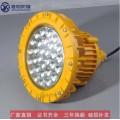 烘干房照明YMD85-60w70w80w防爆LED灯