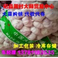 常年大量供应杞县大蒜(混级蒜、印尼蒜、扒米蒜、脱水蒜)