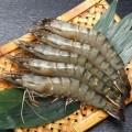 青岛越南黑虎虾大柜进口八千清关包干费用