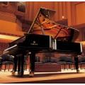 昆明哪里有卖雅马哈三角钢琴 全新雅马哈进口三角钢琴