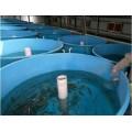 新疆万玖玻璃钢鱼池耐酸碱耐腐蚀质优价廉