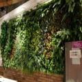 绿色仿真植物制作