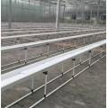 中阳温室育苗温室建设与施工