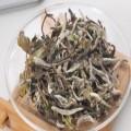 安吉白茶图片
