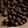 進口咖啡原料