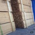 天津绿化杉木杆批发