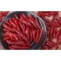 在线提供印度辣椒干进口清关需要提供的资料