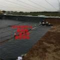 供应广安耐根穿刺抗压排水板厂家价格