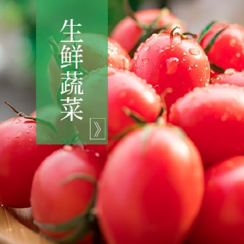 精品生鲜蔬菜商城加盟