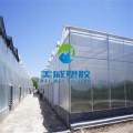 供应西宁西安新疆温室花房温室大棚6毫米透明PC阳光板
