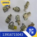 厂家直销测压管接头G1/4 尼龙 压力表线 微型高压测压管0