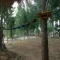 景区丛林穿越设计0