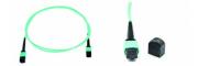 MPO/MTP-MPO/MTP跳线