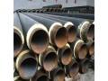 保温钢管 (5)