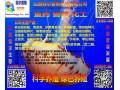 消毒剂 杀虫剂 水质改良剂 除苔灭藻剂 山西菲尔普斯 (10)