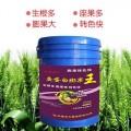 高鉀水溶肥代理