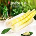 貴州最好的竹筍商家