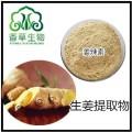 生姜提取物10:1 水溶性生姜粉 姜辣素80目