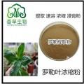 羅勒提取物 供應 羅勒葉粉 羅勒籽纖維粉80目