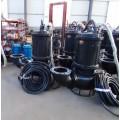 南阳耐磨潜污泵  工程专用双搅拌器潜渣泵国标配件