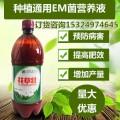 甘蔗種植那個牌子的營養液可以有效減少病害提高產量