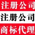 张店高新等淄博各区高效注册公司代理记账