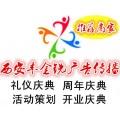 西安豐金銳開業慶典 發布會 答謝會 舞臺搭建 文藝演出
