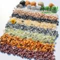 彩色小石米 盆景盆栽鋪面石米石 保定機制棱角小石子