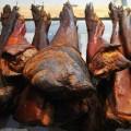 贵州糯谷猪价格