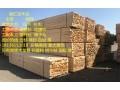 紹興新工程方木價格 (3)
