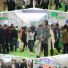 2020郑州美纹纸展览会 —官方网站