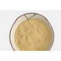 长期供应菌体蛋白单细胞蛋白微生物蛋白