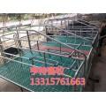 复合双体母猪产床复合保温箱养猪场专用