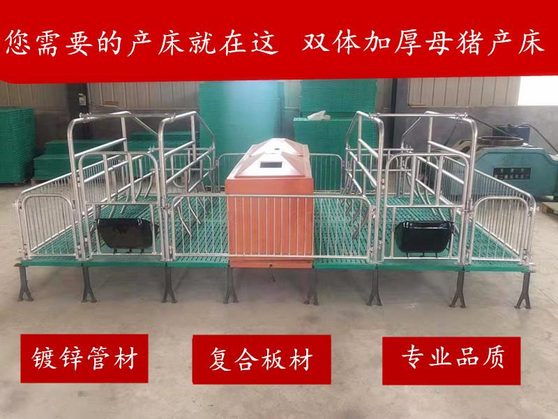 供应母猪产床  双体加厚猪用床  可定制
