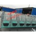 出售母猪限位栏设备专业生产厂家
