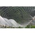 防鳥天網怎么支起來_登隆絲網