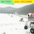 河南厂家价格多少钱 滑雪场规划设计整套设备国产人工造雪机