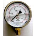 充油压力表YN100