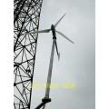 低速永磁直驅發電機 220v風光互補風力發電機設備