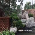 广东泰山石原石 庭院泰山石假山案例 广东泰山石价格