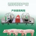 母猪产床怎么使用可减少细菌滋生提高猪仔成活率